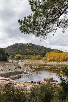 Diversi alberi ingialliti dall'arrivo dell'autunno