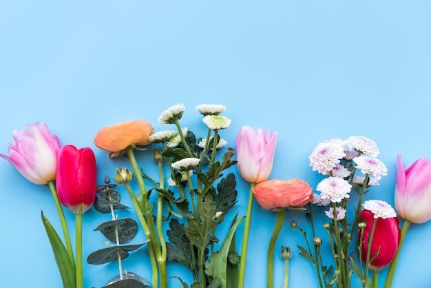 Diversi fiori freschi luminosi su steli