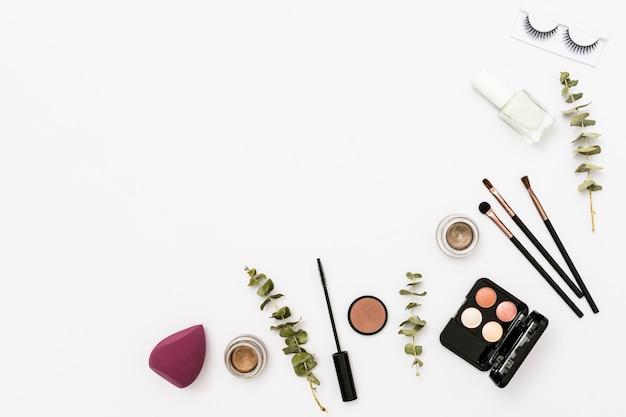 Diversi tipi di tavolozza di cosmetici con ombretto; bottiglia di smalto per unghie; ciglia e pennelli con ramoscello su sfondo bianco