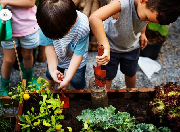 Diverso gruppo di bambini che piantano