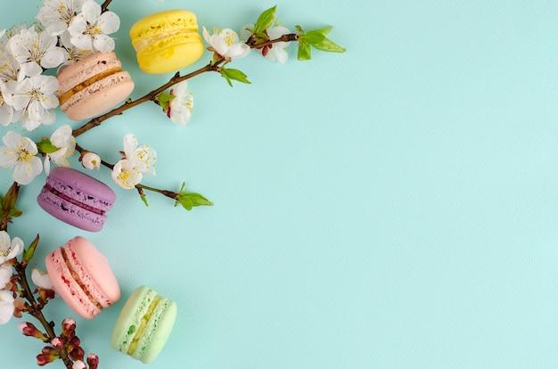 Dolci macarons o amaretti decorati con fiori di albicocca in fiore su menta pastello