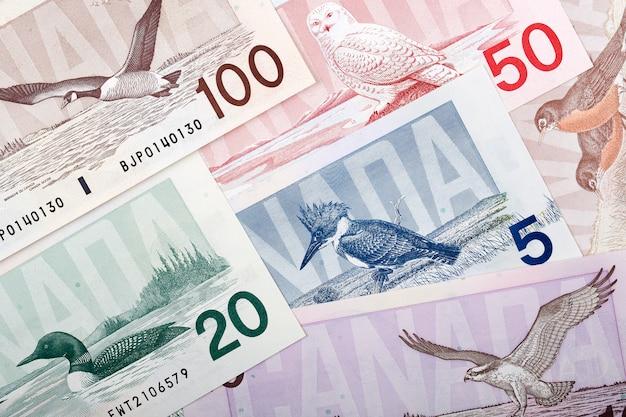 Dollari canadesi