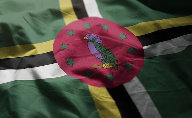 Dominica flag rumpled close up