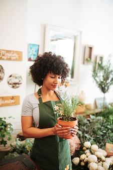 Donna africana afro che tiene pianta in vaso in negozio floreale