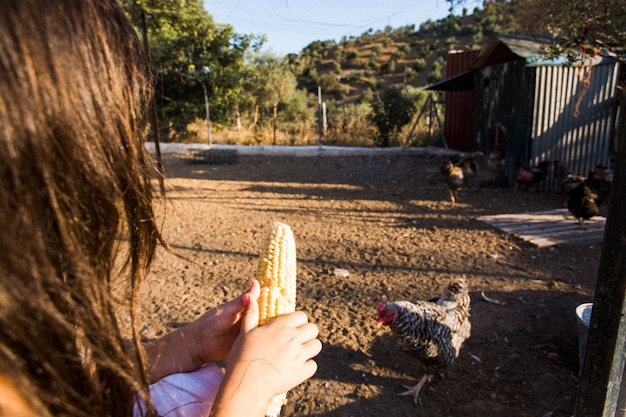 Donna che alimenta il seme di mais alla gallina
