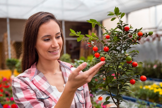 Donna che esamina i pomodori ciliegia in serra
