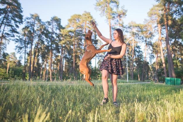 Donna che gioca con un cane in un parco contro gli alberi. il cane salta nelle mani della ragazza.