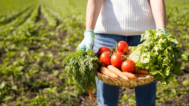 Donna che giudica un cestino pieno delle verdure con lo spazio della copia