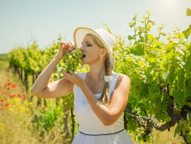 Donna che mangia l'uva verde fresca su una vigna.