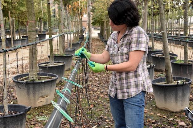 Donna che prepara un'irrigazione a goccia in un centro di giardinaggio