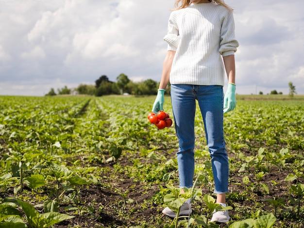 Donna che tiene alcuni pomodori con lo spazio della copia