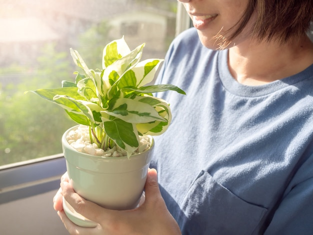 Donna che tiene le piante verdi in vaso a casa.