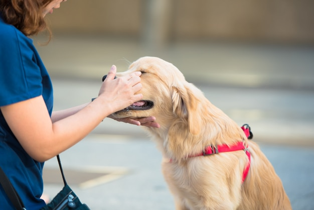 Donna con cane marrone amichevole.