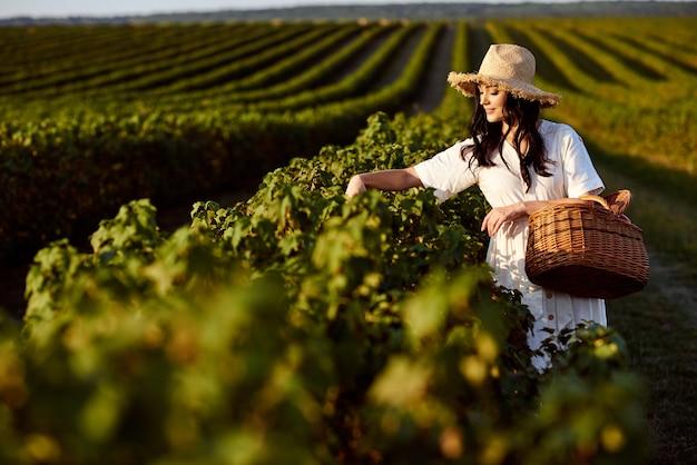 Donna con cestino da picnic tra campo di ribes.