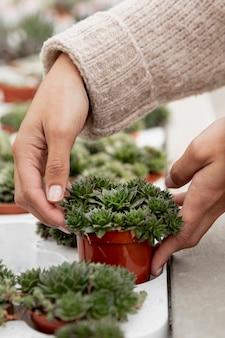 Donna del primo piano che organizza il vaso da fiori