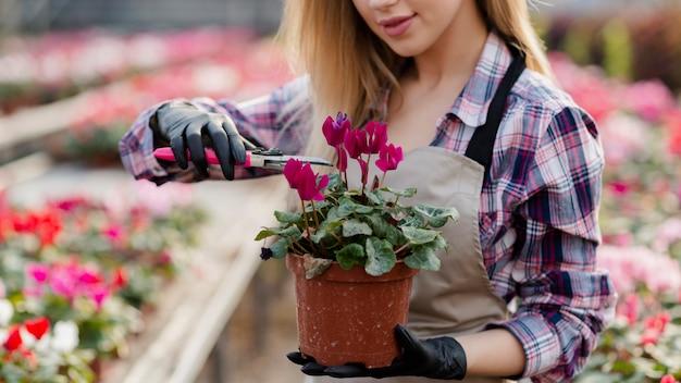 Donna del primo piano che rimuove le foglie extra del fiore