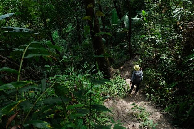 Donna del viaggiatore che cammina con lo zaino in foresta.
