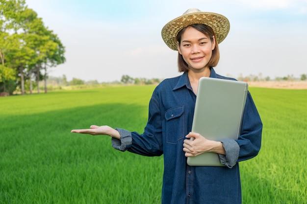 Donna dell'agricoltore con il computer portatile che sta sul giacimento verde del riso