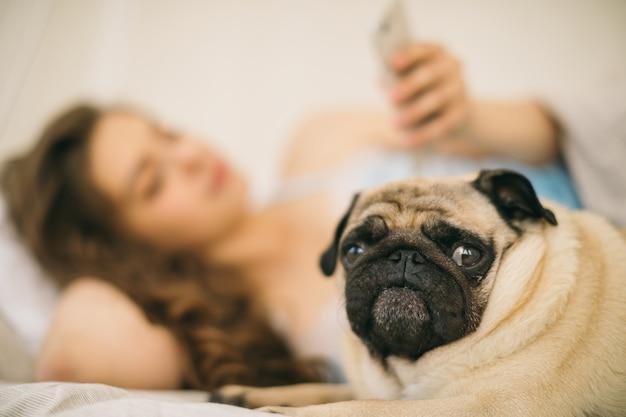 Donna di blured che utilizza cellulare nel letto. in primo piano il cane è a fuoco