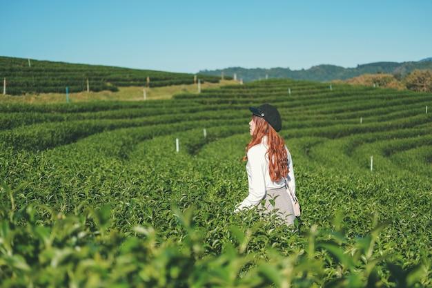 Donna di viaggio che cammina nella pianta del tè a chiang rai thailand