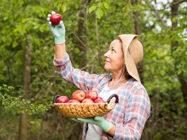 Donna di vista laterale che giudica un cestino pieno delle mele