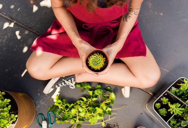 Donna di vista superiore che tiene una pianta