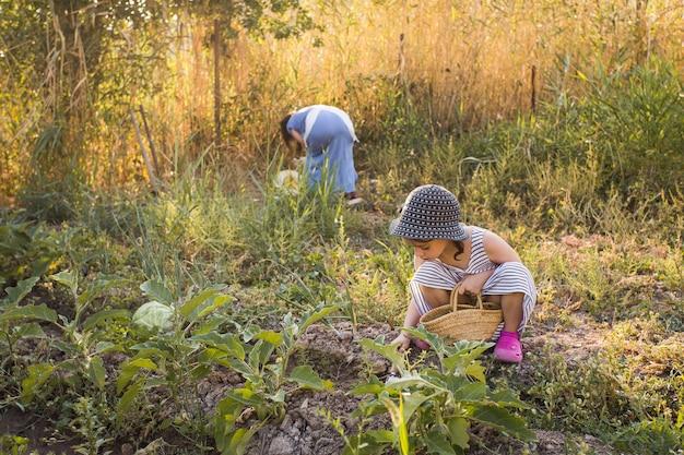Donna e sua figlia che raccolgono verdura nel campo