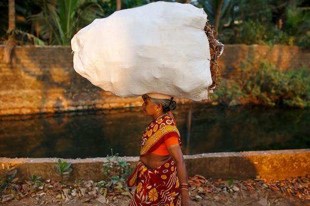 Donna indiana con una borsa grande e pesante di sottobosco sulla testa in un sari rosso. va lungo il canale del fiume con le palme. il sole al tramonto a gokarna