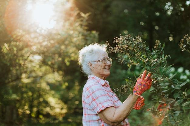 Donna maggiore che tende ai fiori nel suo giardino