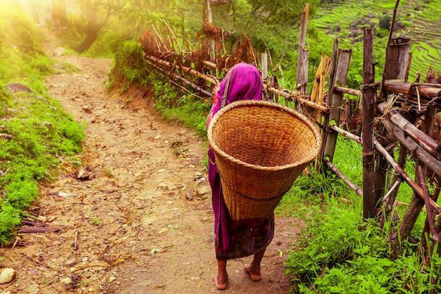 Donna nepalese con cesto di vimini