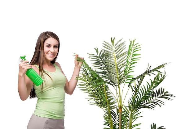 Donna prendersi cura della pianta isolata on white