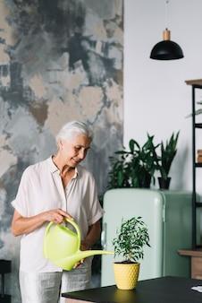 Donna senior sorridente che innaffia la pianta in vaso sul contatore di cucina