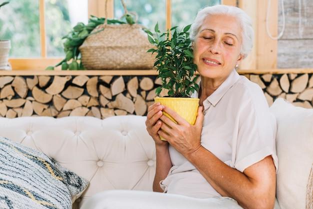 Donna senior sorridente che si siede sul sofà che tocca la pianta da vaso