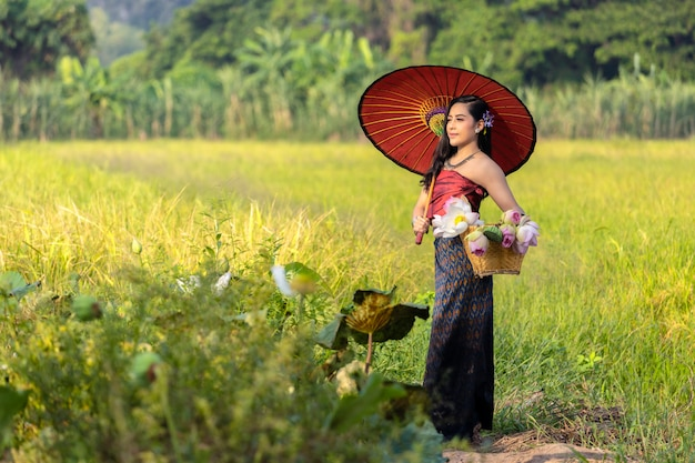 Donne asiatiche che si siedono la cultura della tailandia dell'agricoltore con il vestito tradizionale dal loto.