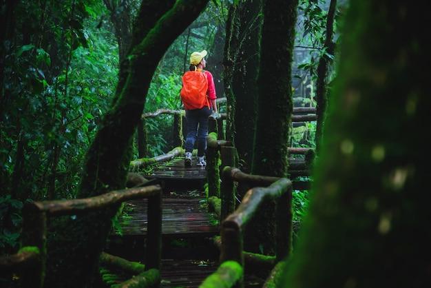 Donne asiatiche t nella giungla a chiangmai in tailandia.