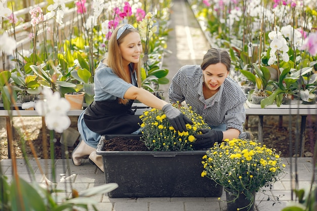 Donne che lavorano in una serra con vasi di fiori