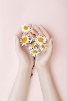 Donne della cosmetica naturale della camomilla di arte della mano di modo