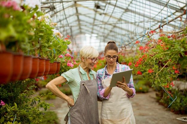 Donne moderne senior e giovani del fiorista che esaminano una compressa digitale