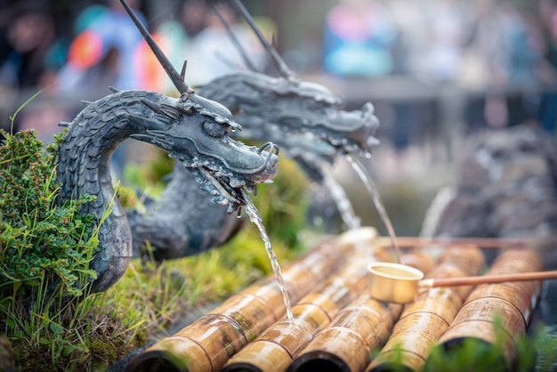 Drago di forma di acqua sorgiva nel villaggio di oshino hakkai