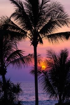 Drammatico bel cielo al crepuscolo tramonto con il sole del clima tropicale.