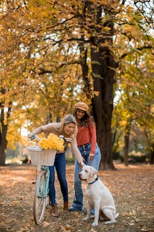 Due amici femminili che camminano nel parco giallo di autunno con il cane e la bicicletta