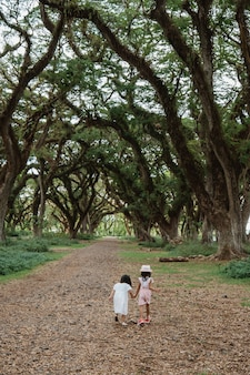 Due bambini si allontanano tra un albero ombroso