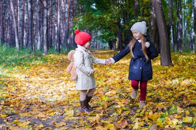 Due belle ragazze adorabili che camminano nella foresta dell'autunno al caldo giorno soleggiato di autunno