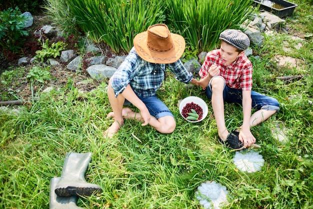 Due fratelli seduti sull'erba e mangiano le ciliegie nel villaggio