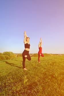 Due giovani ragazze bionde in abiti sportivi praticano yoga su una pittoresca collina verde all'aria aperta la sera.