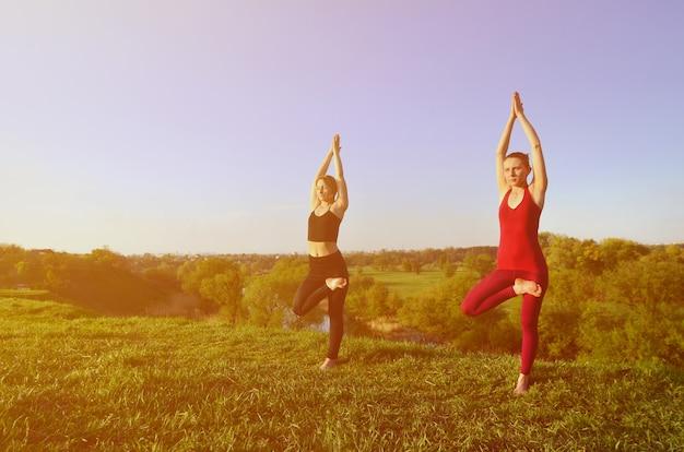 Due giovani ragazze bionde in abiti sportivi praticano yoga su una pittoresca collina verde