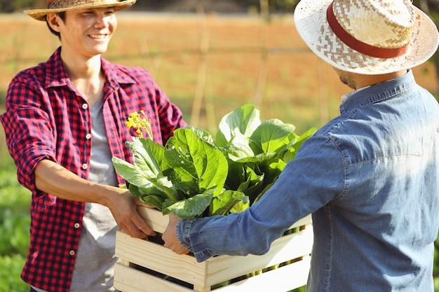 Due giovani uomini stanno inviando casse di legno piene di verdure fresche al mattino.