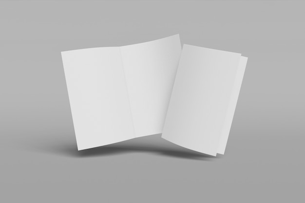 Due libretti verticali isolati su sfondo grigio