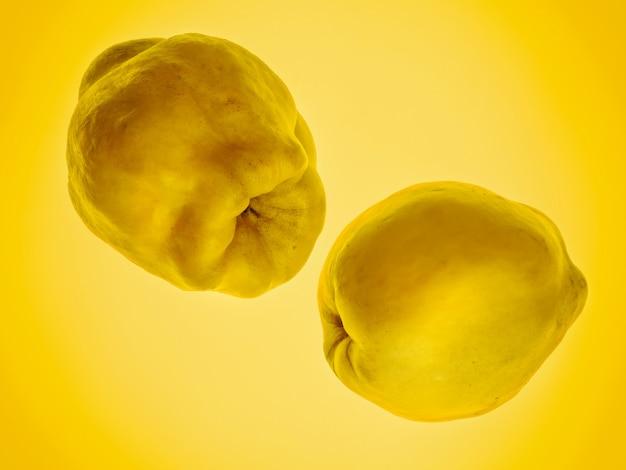 Due mele cotogne su giallo