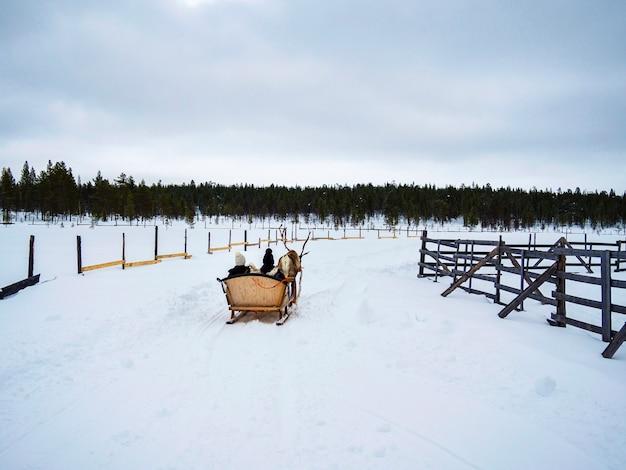 Due persone irriconoscibili su una renna con slitte